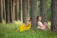 Two little sisters sitting in a pine forest. Nature. Stock Image