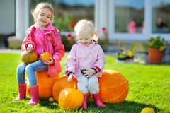 Two little sisters and some huge pumpkins Royalty Free Stock Images