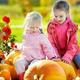 Two little sisters and some huge pumpkins Royalty Free Stock Photography