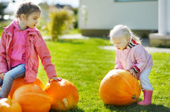 Two little sisters and some huge pumpkins Stock Images