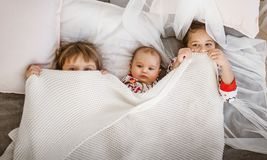 Two little sisters and a tiny brother lie on the bed under the white blanket in the light cozy bedroom.  royalty free stock photo