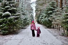 Are two little sisters on a walk in the woods on a winter snowy stock images