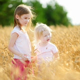 Two little sisters walking happily in wheat field Royalty Free Stock Image