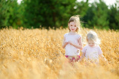 Two little sisters walking happily in wheat field Stock Photos