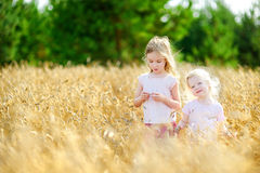 Two little sisters in wheat field on summer day Royalty Free Stock Photo