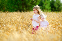 Two little sisters in wheat field on summer day Royalty Free Stock Image