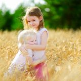 Two little sisters in wheat field on summer day. Two adorable little sisters walking happily in wheat field on warm and sunny summer day Royalty Free Stock Photography