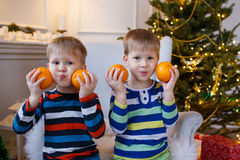 Two little smiling kids, boys keep orange on Christmas tree background. Happy friendly children. Selective focus Royalty Free Stock Images