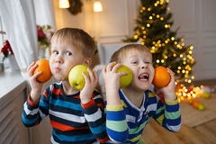 Two little smiling kids, boys keep orange on Christmas tree background. Happy friendly children. Selective focus Royalty Free Stock Image