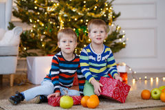 Two little smiling kids, twins boys keep orange and box on Christmas tree background. Happy friendly children. Selective Stock Image