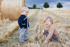 Two little toddler boys playing on straw field Stock Images