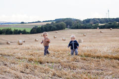 Two little toddler boys playing on straw field Royalty Free Stock Photography