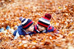 Two little twin boys lying in autumn leaves in colorful clothing. Happy siblings kids having fun in autumn forest or. Park on fall day. With casual fashion hats stock images