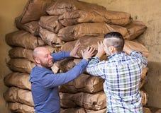 Two loaders handling sacks Stock Photos