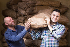Two loaders handling sacks. Two smiling loaders handling sacks with something heavy indoors Stock Image