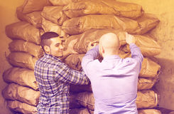 Two loaders handling sacks. Two young positive loaders handling sacks with something heavy indoors Stock Image