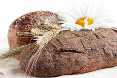 Two loaves of bread and wheat ears Royalty Free Stock Photo