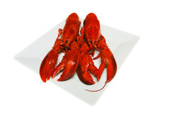 Two lobsters Royalty Free Stock Photography