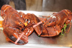 Two lobsters just boiled with herbs Royalty Free Stock Photo