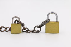 Two lock with the chain. Two yellow lock with the chain  on white background Stock Images