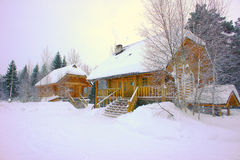 Two log houses on the background of the winter forest. Two log houses. The roof is covered with snow. Snow is all around. In the background a fir forest. The Royalty Free Stock Images