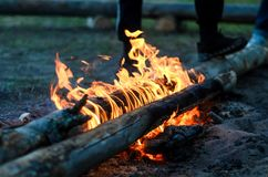 The flames of the pyre. Two loga burning in the flames of the pyre on nature stock photography