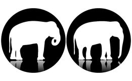 Two logo elephants Royalty Free Stock Images