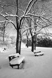 Two lonely benches covered in snow stock image