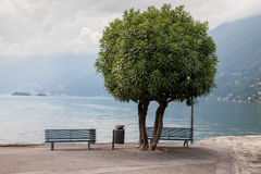 Two lonely benches overlooking the lake Maggiore Stock Photos