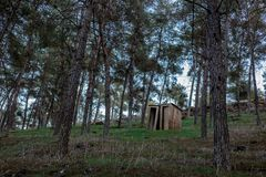Two lonely closets. Two old wooden closets in the forest stock photography