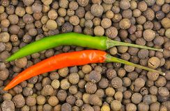 Two long parallel pods of hot chili on a black pepper background large peppercorn background decor decoration cooking Mexican cuis. Ine sauce royalty free stock photo