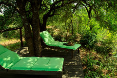 Two loungers on a wooden deck overlooking African bush. In the shade of a tree Stock Images