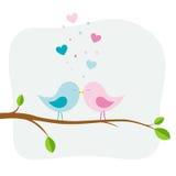 Two love birds Stock Photo