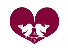 Two love birds Royalty Free Stock Image