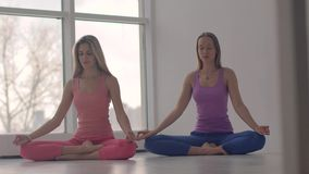 Two lovely calm yoga women meditating in lotus pose together stock footage