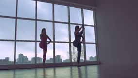 Two lovely women practicing yoga poses together in white studio with natural light stock video