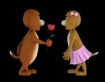Two lover valentine dogs isolated on black background. 3d render stock photo