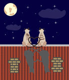Two lovers cats on the roof. A couple of cats in love sitting on the top of the roof Stock Images