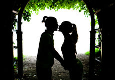 Two lovers kissing Royalty Free Stock Images