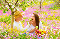 Two lovers on picnic Stock Photography