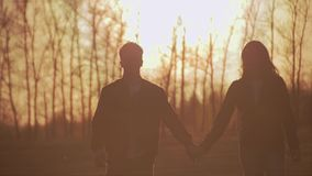 Two lovers and soboak go coming against the background of a beautiful sunset. Beautiful spring alley. Young couple walking at sunset. They are in love and are stock video