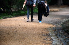 Two lovers walk. Holding each other`s hands Stock Image
