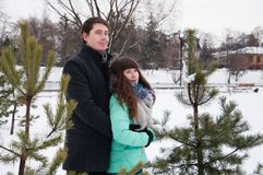 Two lovers walk in the winter park near the pines. Two lovers walk along the winter park near the pines. The couple is walking in the city park, against the Royalty Free Stock Image