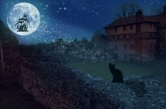 Two loving cats on a moon royalty free stock photo
