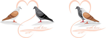 Two loving doves Royalty Free Stock Photography