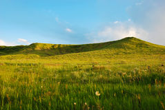Two Low Green Hills in Late Afternoon Royalty Free Stock Image