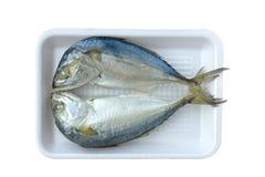 Two mackerel Royalty Free Stock Photo