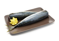 Two mackerel fish fillets Royalty Free Stock Photos