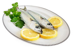 Two mackerels on a plate Royalty Free Stock Photos