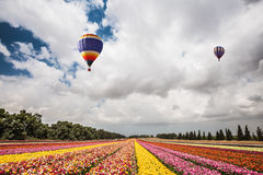 Two magnificent multi-colored balloons Royalty Free Stock Images